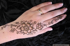 hands and arms henna image 46