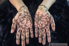 hands and arms henna image 63